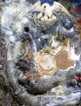 NEL NIDO LA BEATITUDINE - 92x73 cm